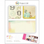 PROJECT LIFE - KIT 380338 - BECKY HIGGENS - ODDS & ENDS