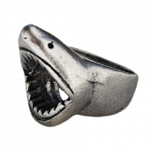 Shark Steel Ring